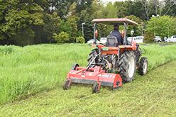 耕作放棄地対策事業